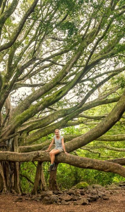 Hier zit ik in een gigantische boom!