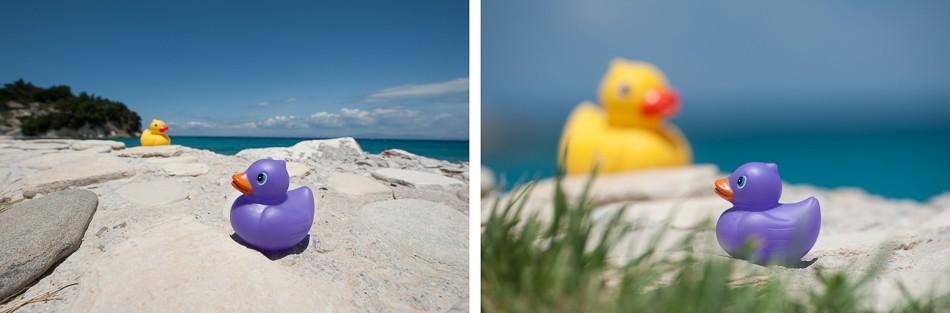 Niet elke objectief geeft bij het fotograferen hetzelfde resultaat. Leer online hierover met deze cursus